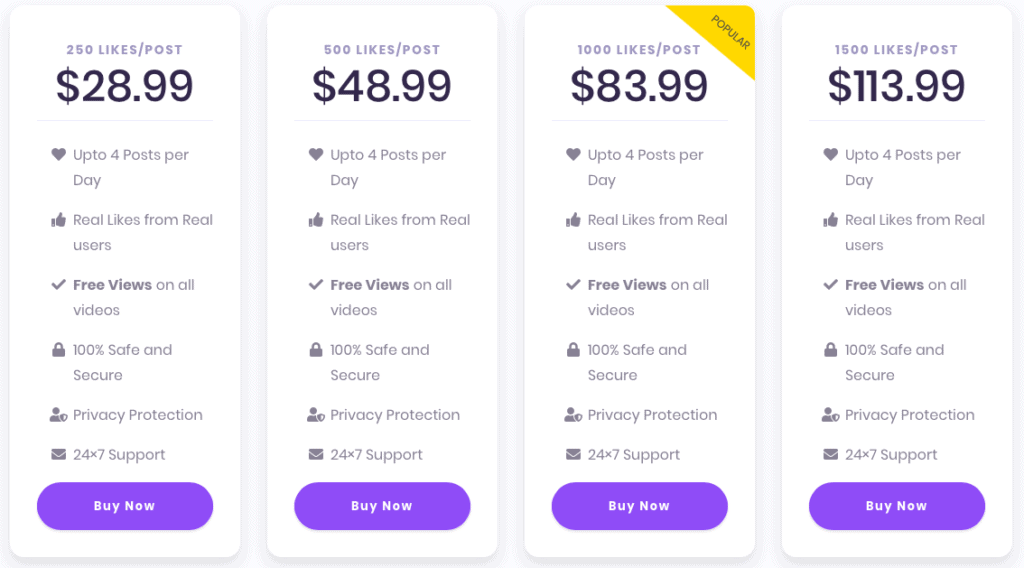 InstaBoostGram Pricing Automatic Likes